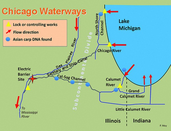 chicago waterways