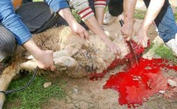 matanza musulmana1_thumb[4]