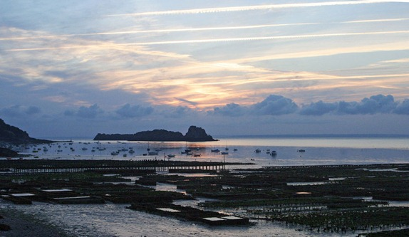 cancale-oyster-beds-