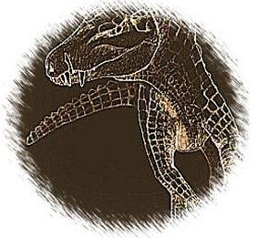 CrocDog-illustration_web-Hans-Larsson1-