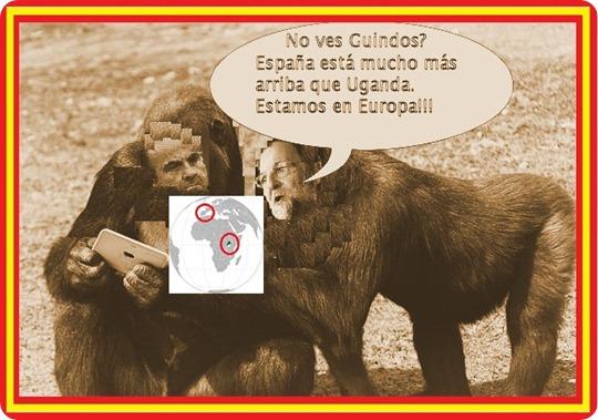 gorilas_1-