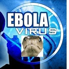 ebola_