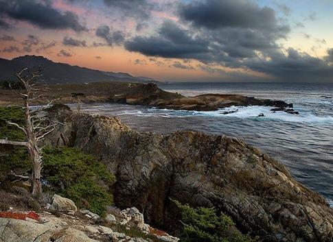 Headland Cove Point Lobos California