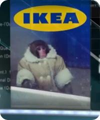macaco--ikea