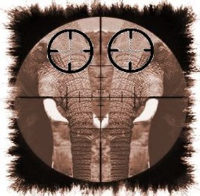 riflescope elephant)