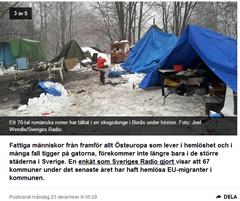 Unos 70 gitanos rumanos acampando en un bosque en_Borås. Foto Joel Wendle-Sveriges_Radio.