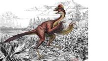 Dinosaur Anzu wyliei. Illustration Mark Klingler - Carnegie Museum of Natural History.