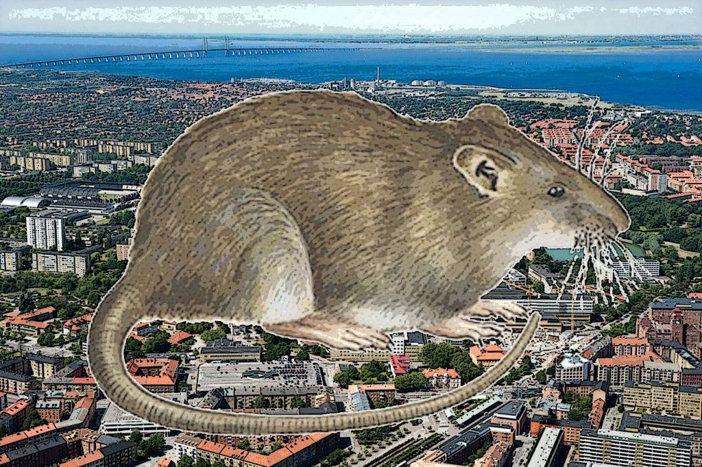 UMAS Malmö