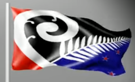 n_z_flag