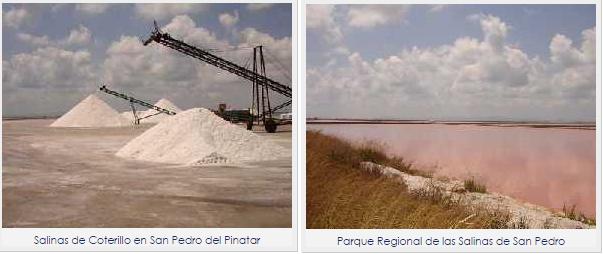 Salinas_de_S.Pedro_de_Pinatar