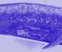 BALLENA AZUL: La memoria controla la elección de ruta por los mares