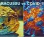 Veneno de serpiente 'Jararacuçu' inhibe vírus Covid-19